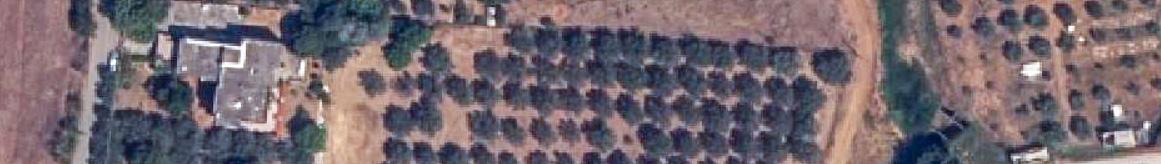 Ορθοφωτοχάρτης